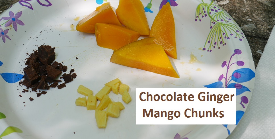 Chocolate Ginger Mango Chunks